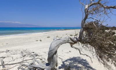 #REPORTAGE – CHRISSI ISLAND, ISOLA CARAIBICA DI CRETA